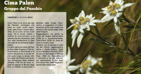 Cima Palon – Pasubio<br>01/05/2018