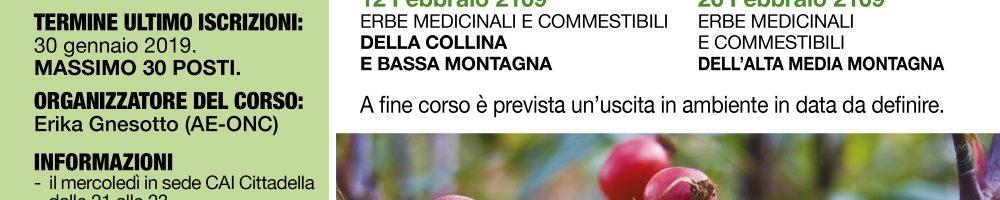 CORSO DIDATTICO PIANTE MEDICINALI 2019