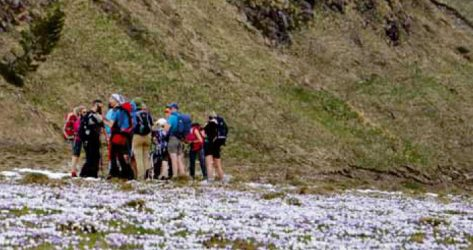 Monte Zerten<br>23/06/2019