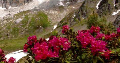 Sentiero Don Cesare – Eremo di San Lorenzo<br>27/06/2019