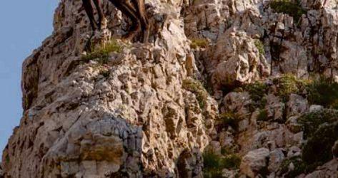 Monte Civillina – Prealpi Vicentine<br>26/09/2019