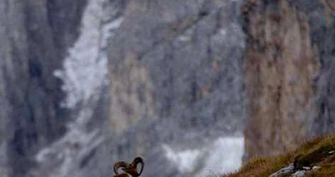 Monte Triglav – Alpi Giulie<br>07-08/09/2019