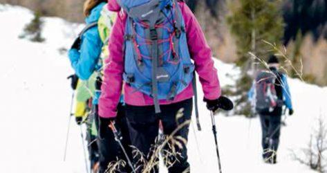 Passo Palù, Monte Conca<br>02/02/2020